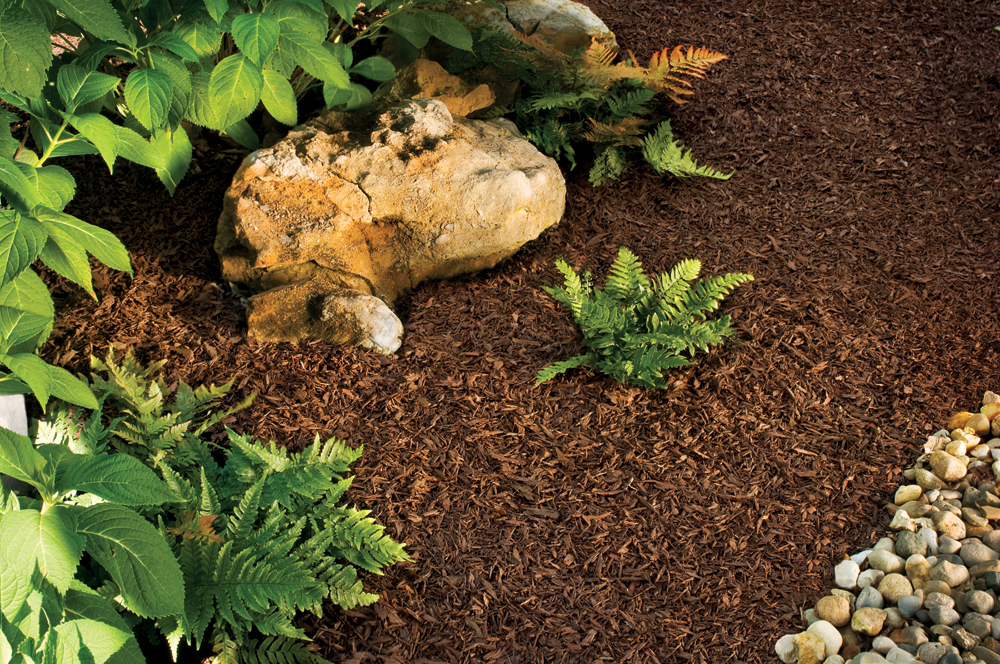 Rubber Mulch 1…Wood Mulch 0!