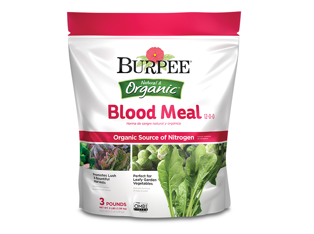 Burpee-Blood-Meal