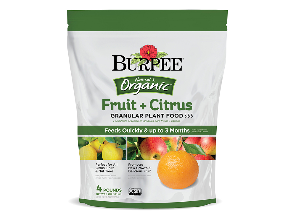 Burpee-Fruit-Citrus