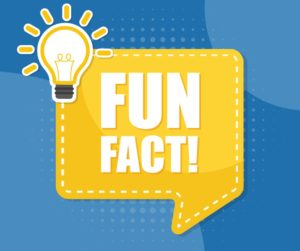 Recycling Fun Facts From Imc Outdoor Living Imc Outdoor Living
